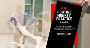 Fighting Monkey -  Anatomy of Injury and Earthquake Architecture